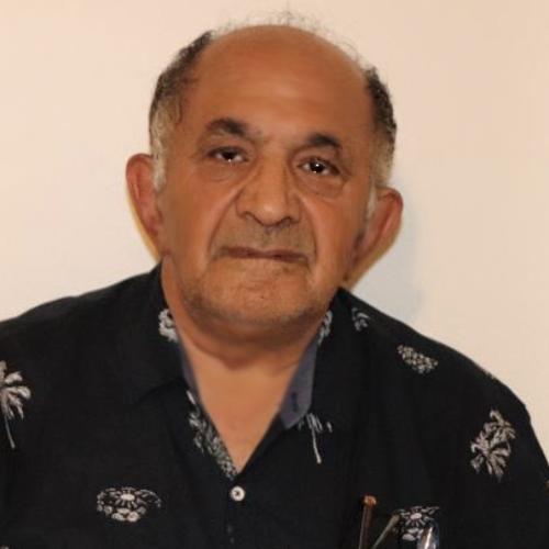 mehdi-salehi